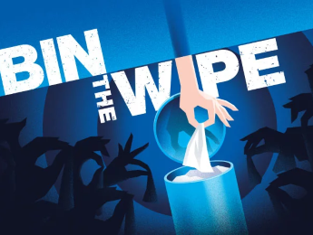 Bin the Wipe